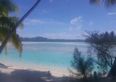 Beautiful Seashore In Cook Islands