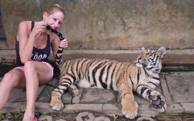 Amphoe Mae Rim, Thailand Trip