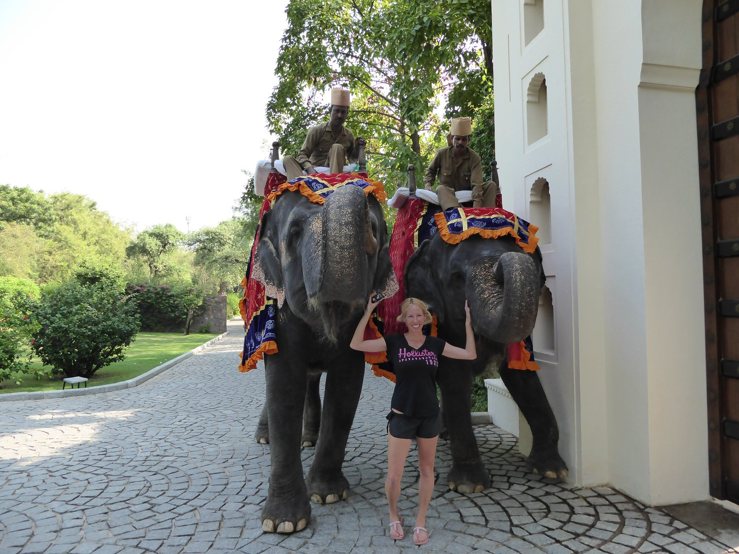 Rachelle Ginsberg standing in front of two elephant at India